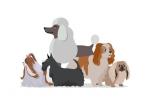 Logo Hundesalon Sissy